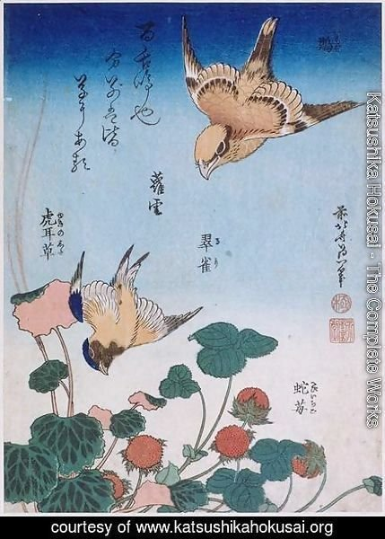 Katsushika Hokusai - Swallow and begonia and strawberry pie