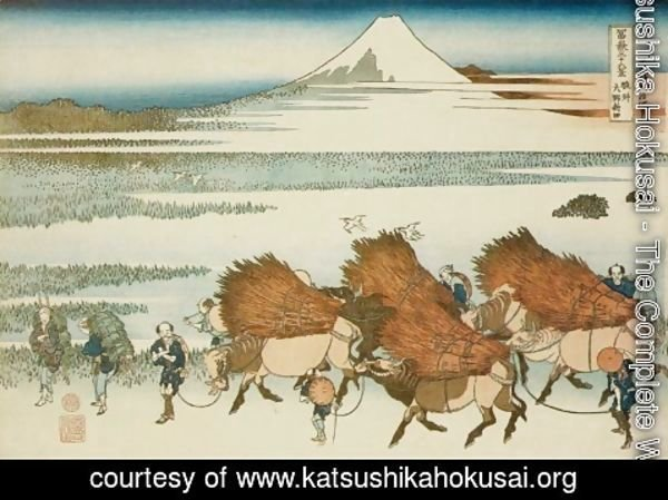 Katsushika Hokusai - New Fields at Ono in Suruga Province (Sunshu Ono shinden)